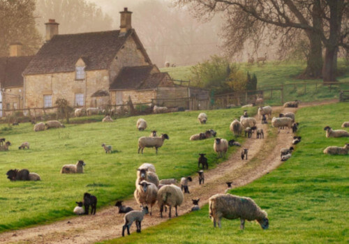 England Hiking Tour - Cotswold Way