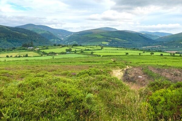 Free Hiking Guides for Wicklow with Hillwalk Tours